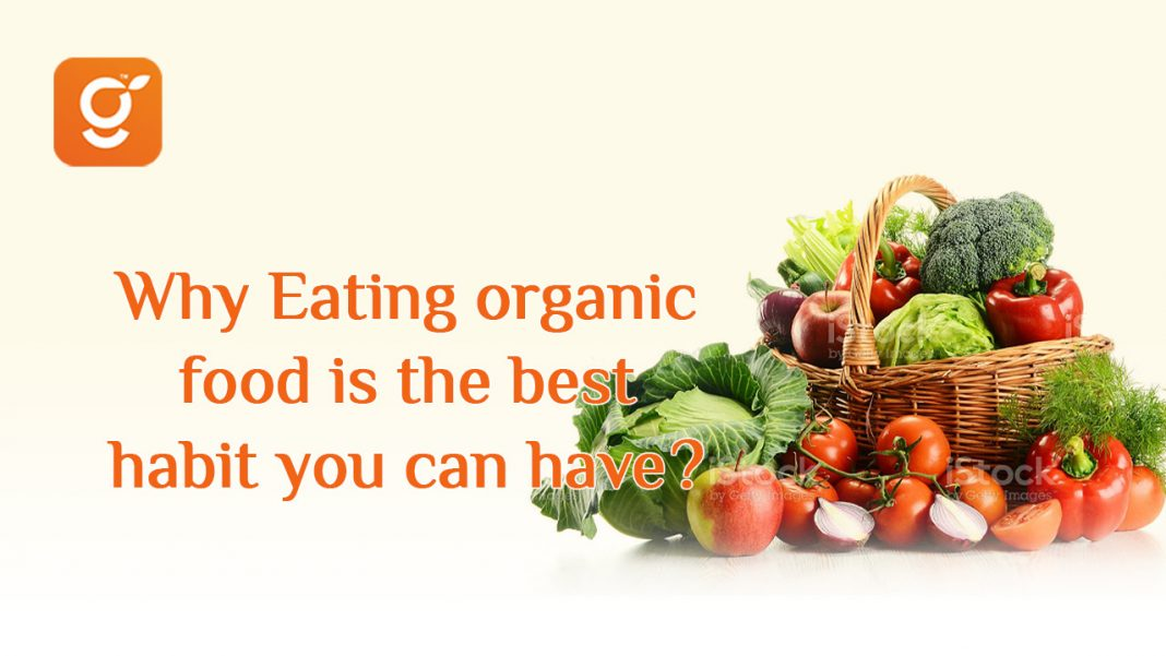 Why eating organic food is the best habit you can have